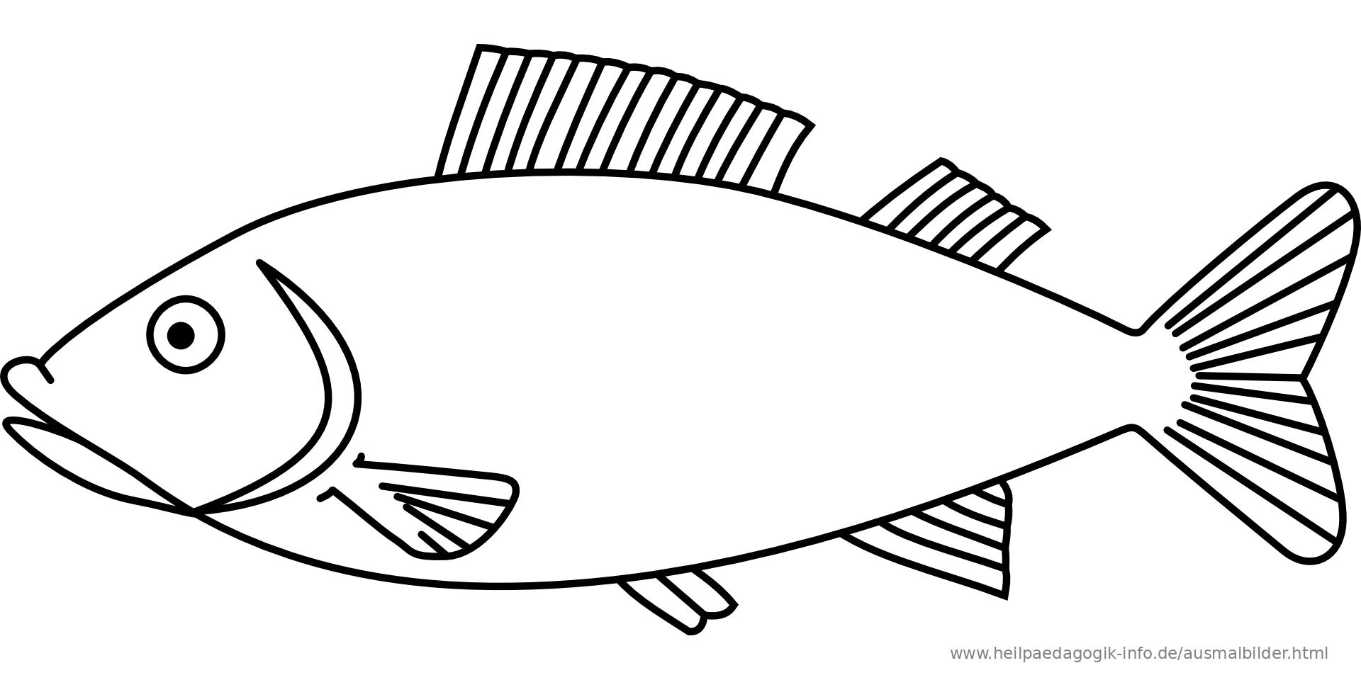 malvorlagen fische kostenlos  malvorlagen