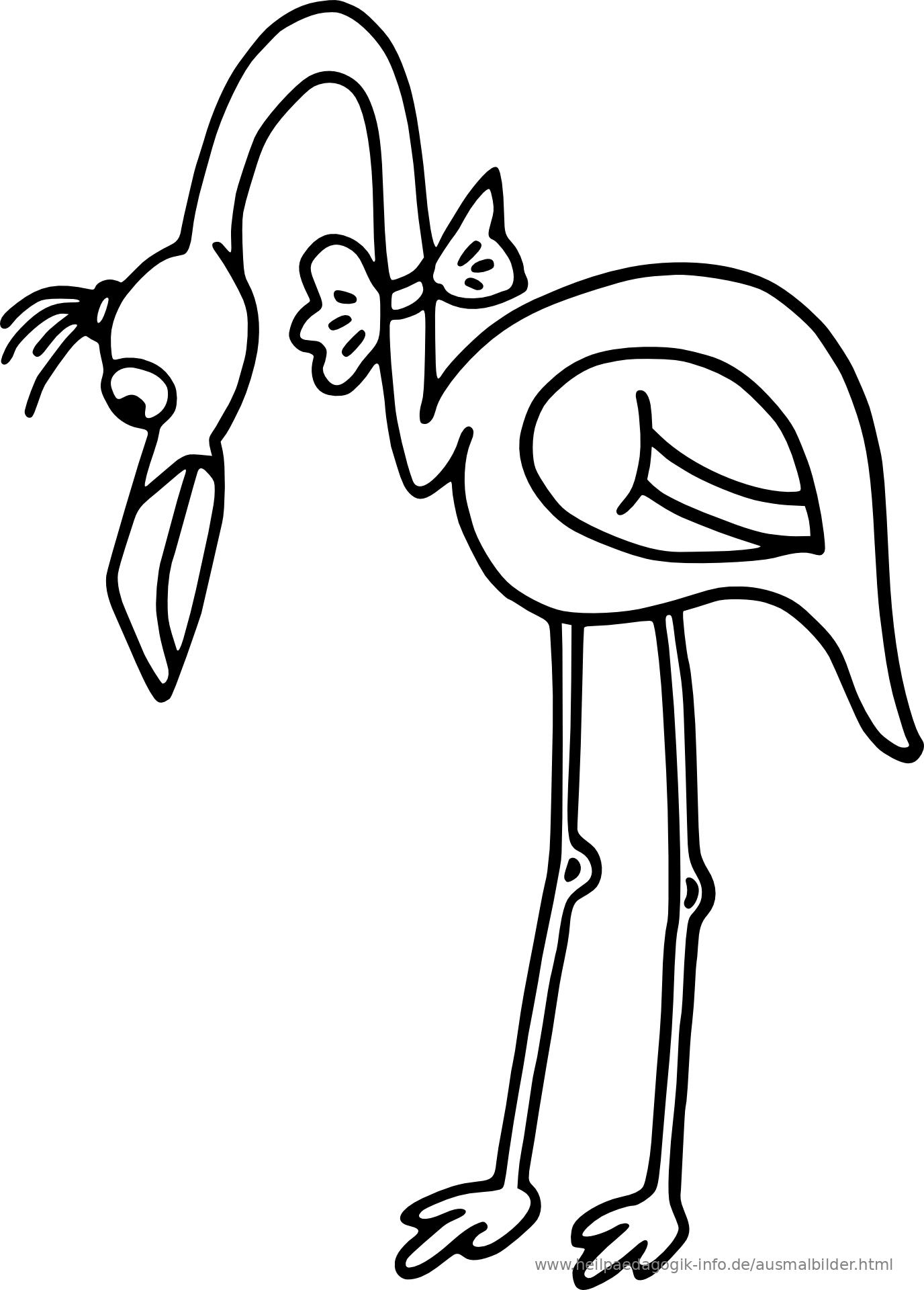 flamingo zum ausmalen  vorlagen zum ausmalen gratis