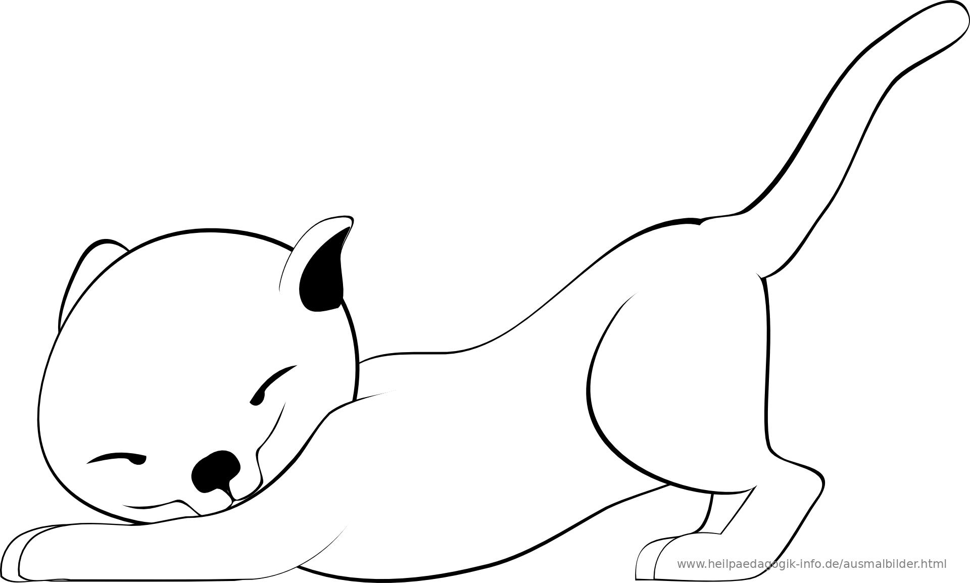 owalo design katzen hunde ausmalbilder tiere