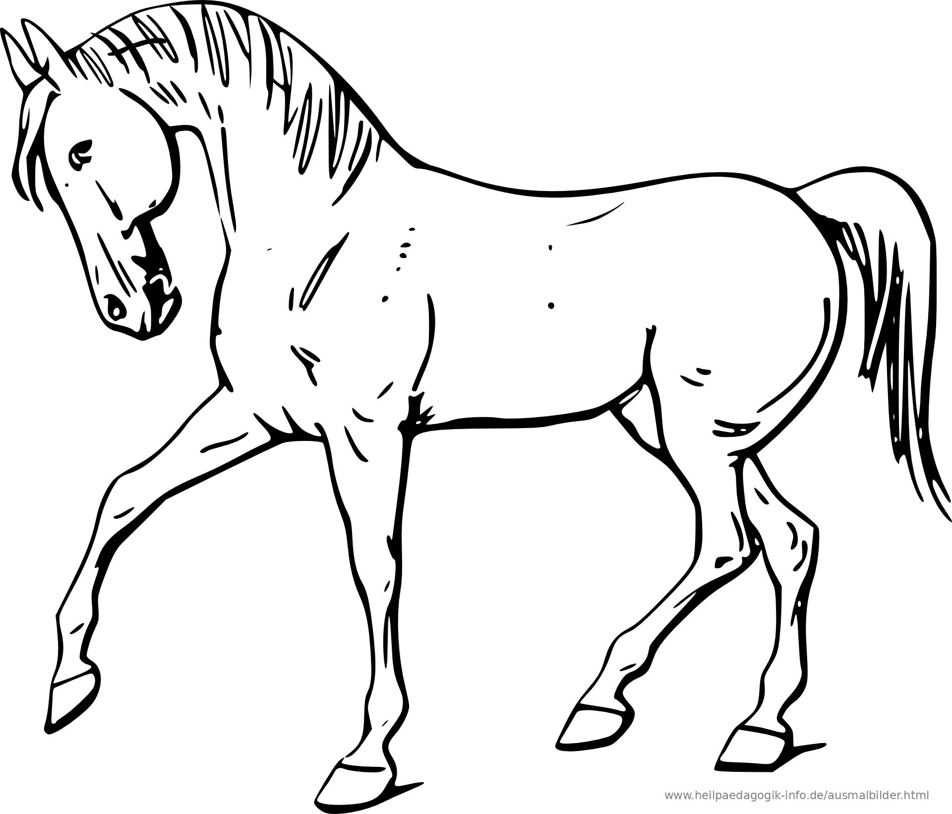 ausmalbilder ostern pferde  x13 ein bild zeichnen