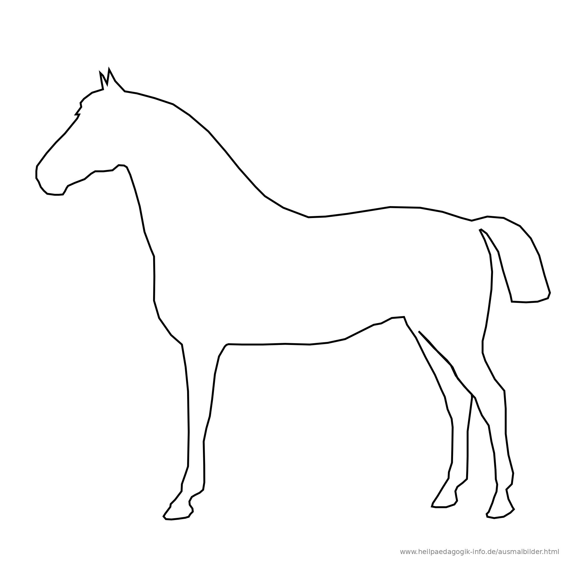 pferd ausmalbild einfach  kinder ausmalbilder