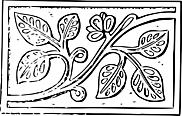 Ausmalbild Malvorlage Blumen