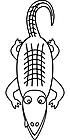 Ausmalbild Malvorlage Krokodil / Alligator