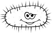 Ausmalbild Malvorlage Bakterie