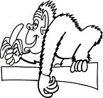 Ausmalbild Malvorlage Affe