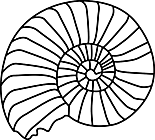 Ausmalbild Malvorlage Fossil