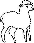 Ausmalbild Malvorlage Lamm