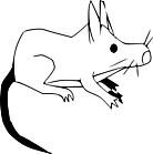 Ausmalbild Malvorlage Ratte