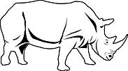 Ausmalbild Malvorlage Nashorn