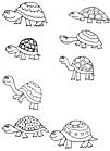 Ausmalbild Malvorlage Schildkröten