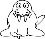 Ausmalbild Malvorlage Seerobbe