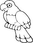Ausmalbild Malvorlage Papagei