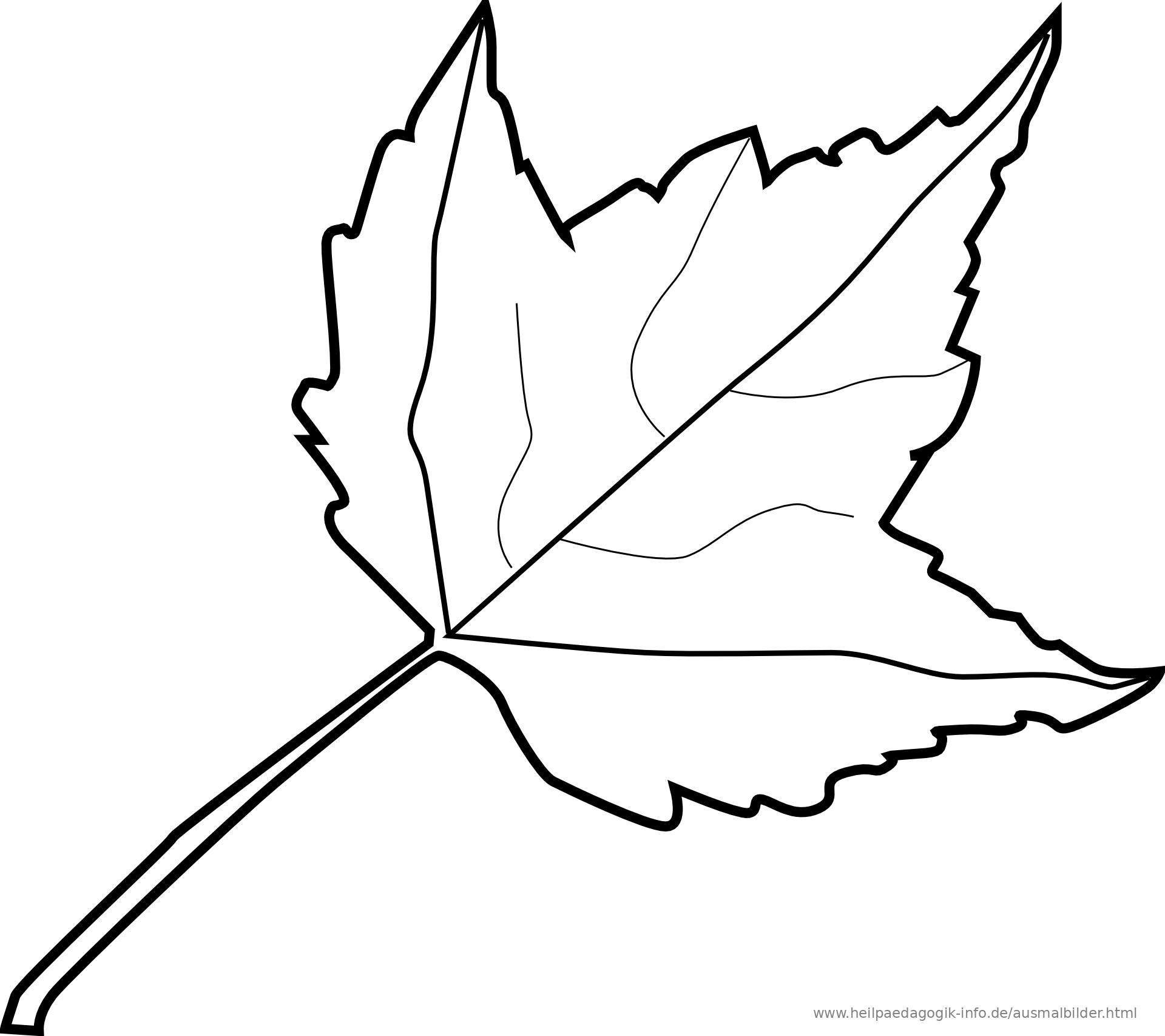 Ausmalbilder Blumen Baume Blatter