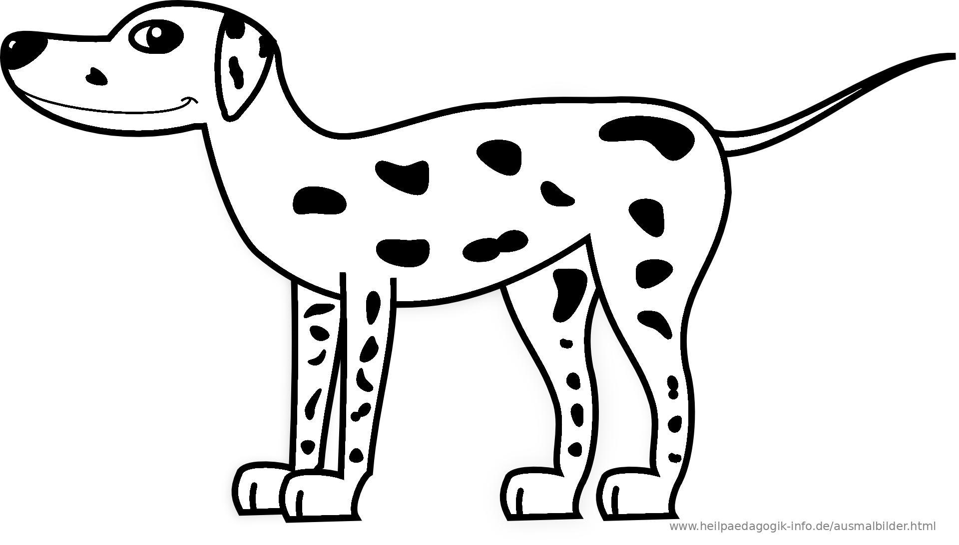 Niedlich Ausmalbilder Der Hunderasse Fotos - Beispiel Business ...
