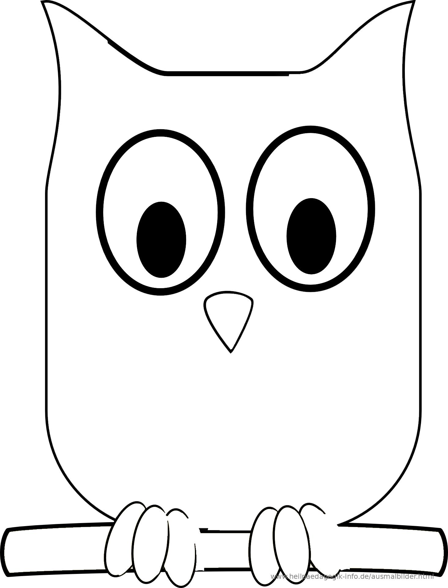 Ausmalbilder Vögel Malvorlagen Kostenlos zum Ausdrucken 9781431 ...