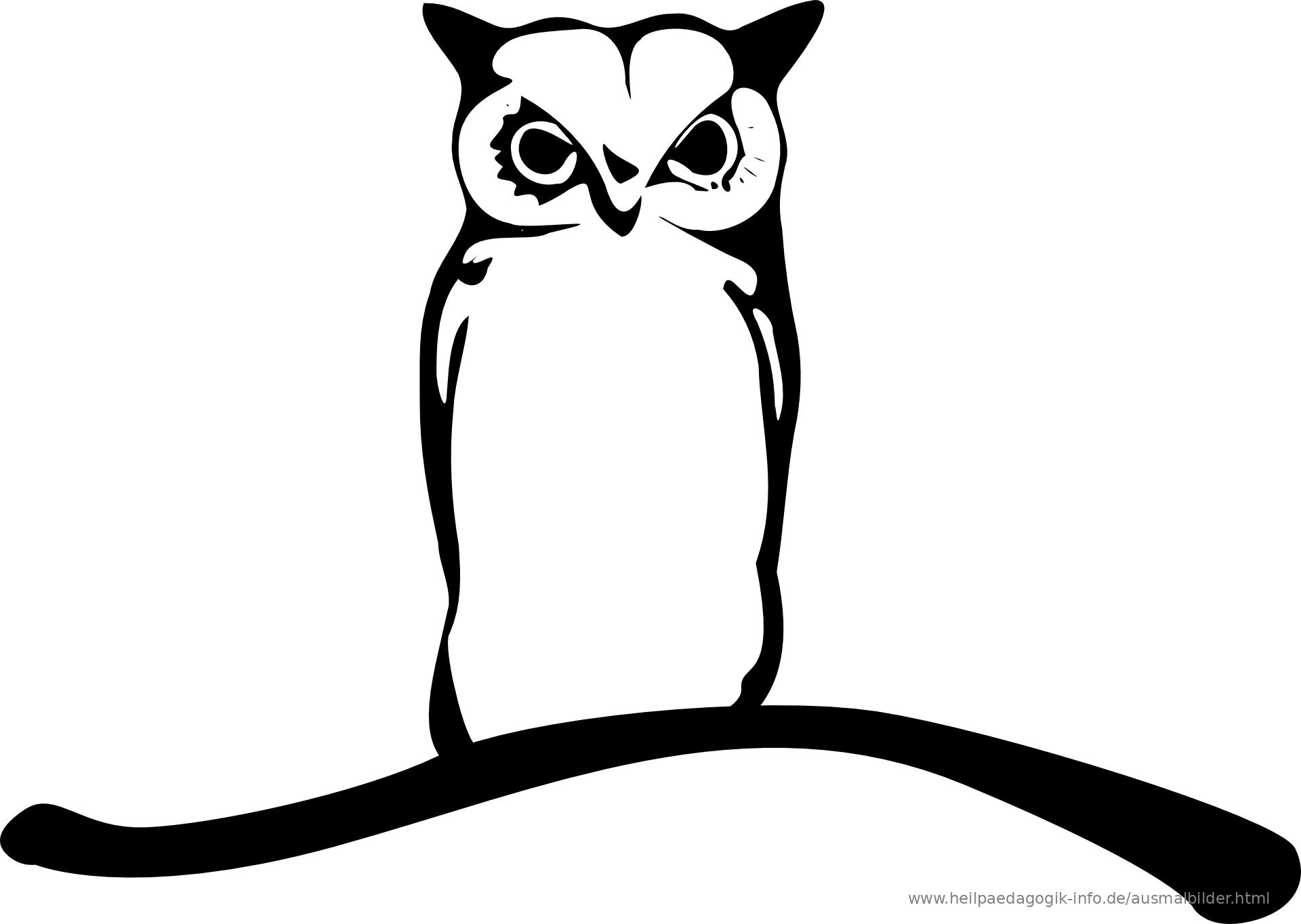 Genial Vogel Ausmalbild Dekoration Von Als Modern Oder Png Anzeigen