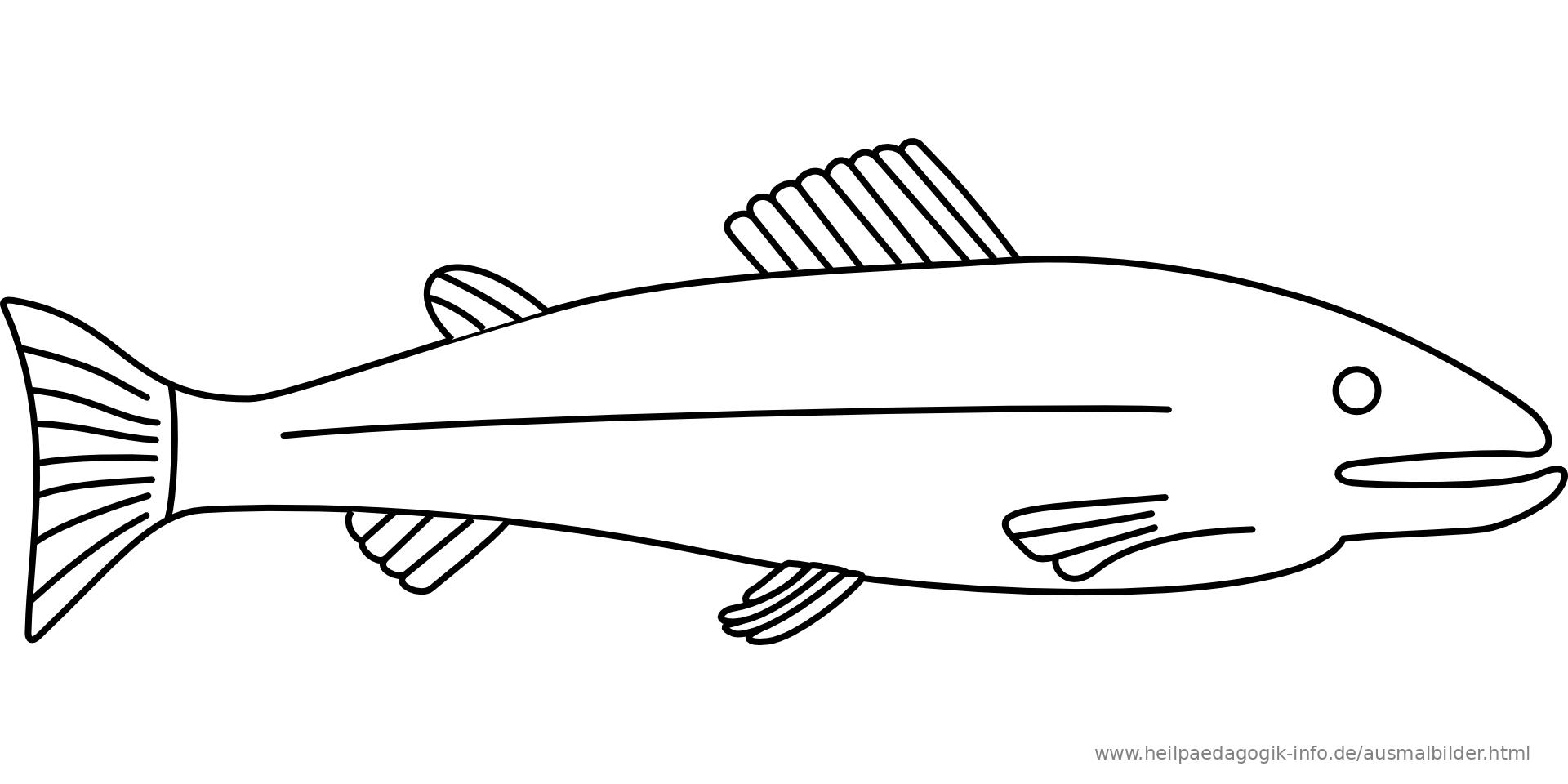 Ausmalbilder Fische