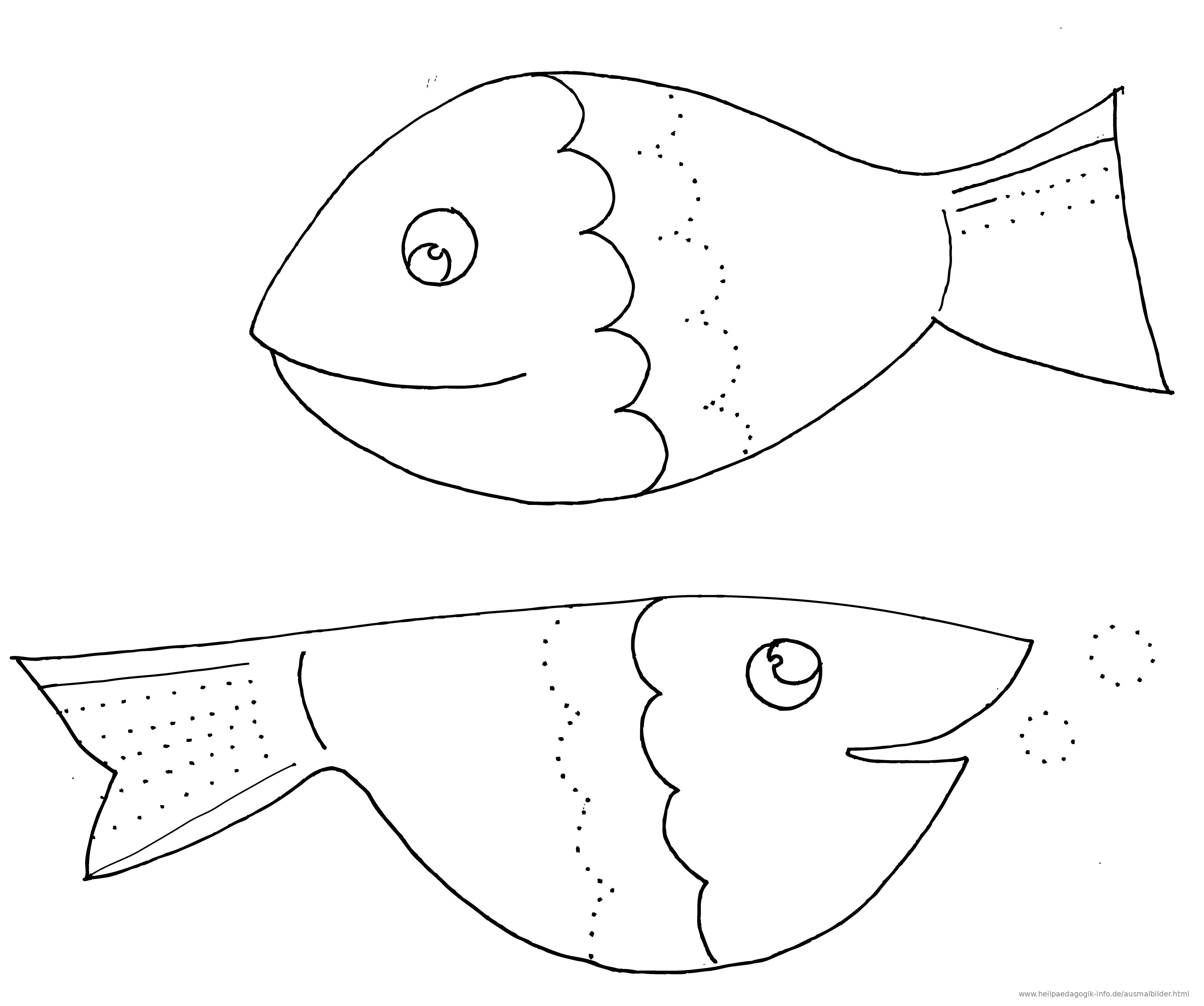 Ausmalbild Fische Schwungübung Als PDF oder PNG anzeigen