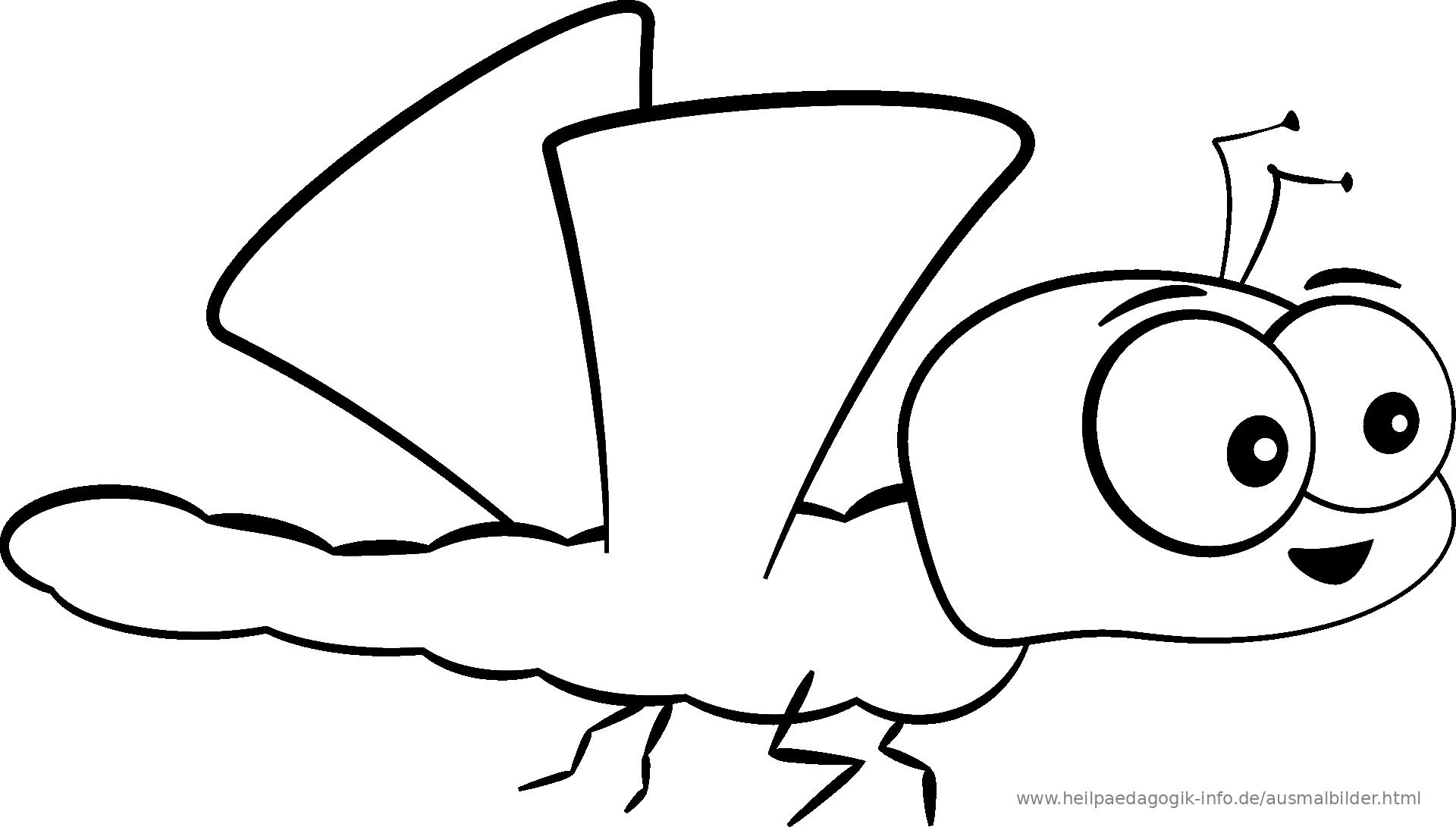 Malvorlagen Käfer Insekten  Coloring and Malvorlagan