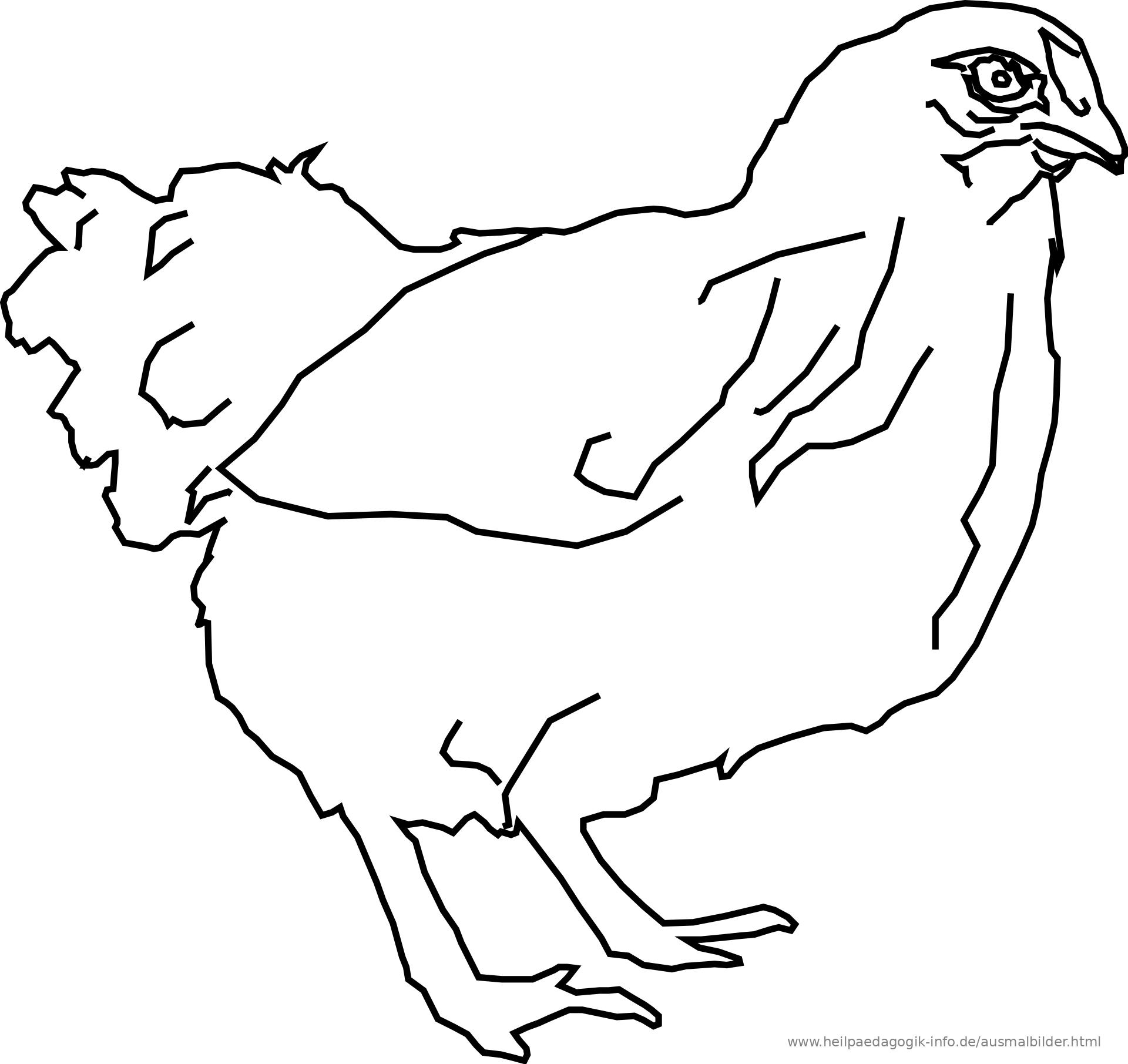 Tolle Gebratenes Huhn Malvorlagen Ideen - Entry Level Resume ...