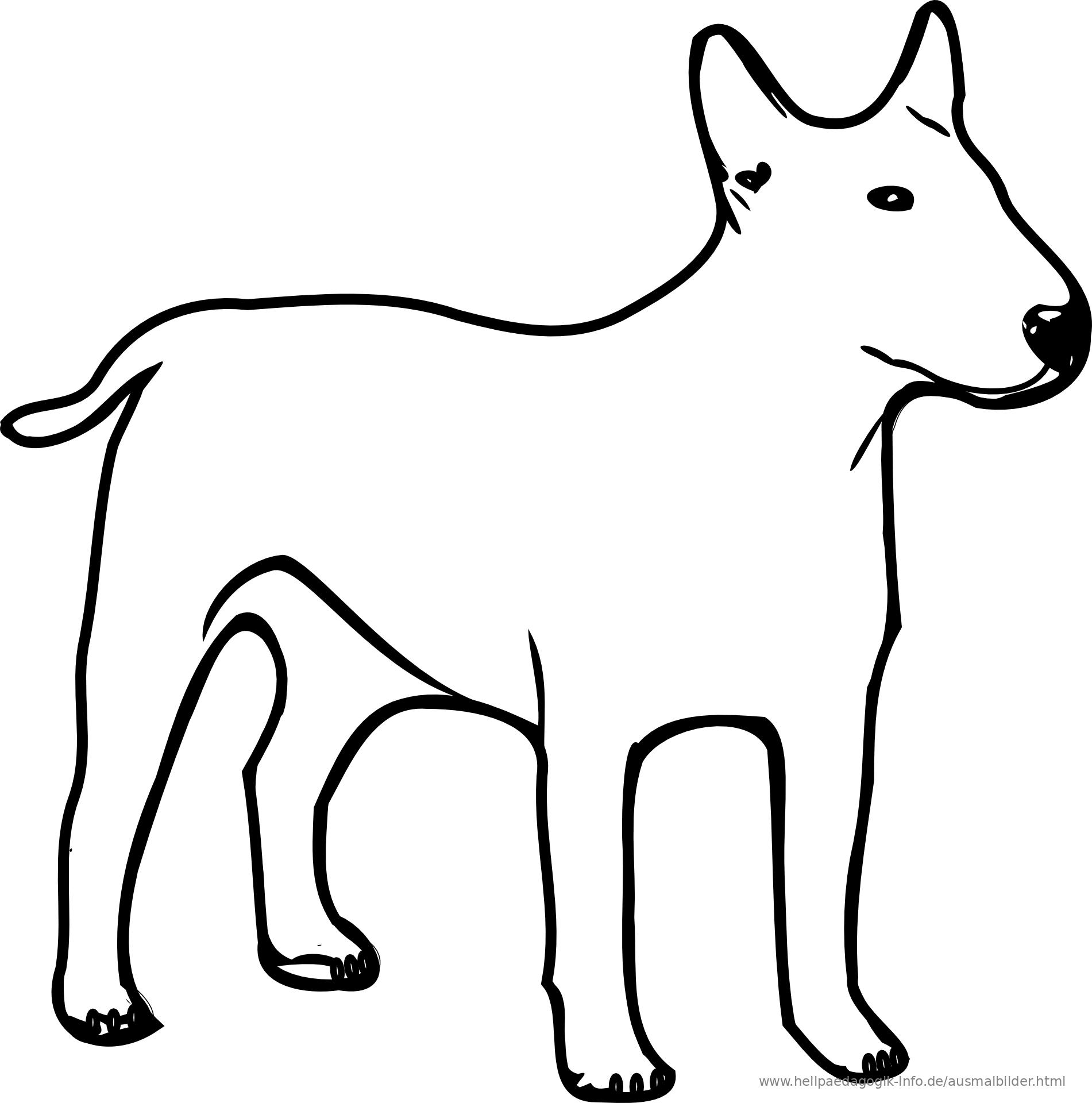 ausmalbilder hunde