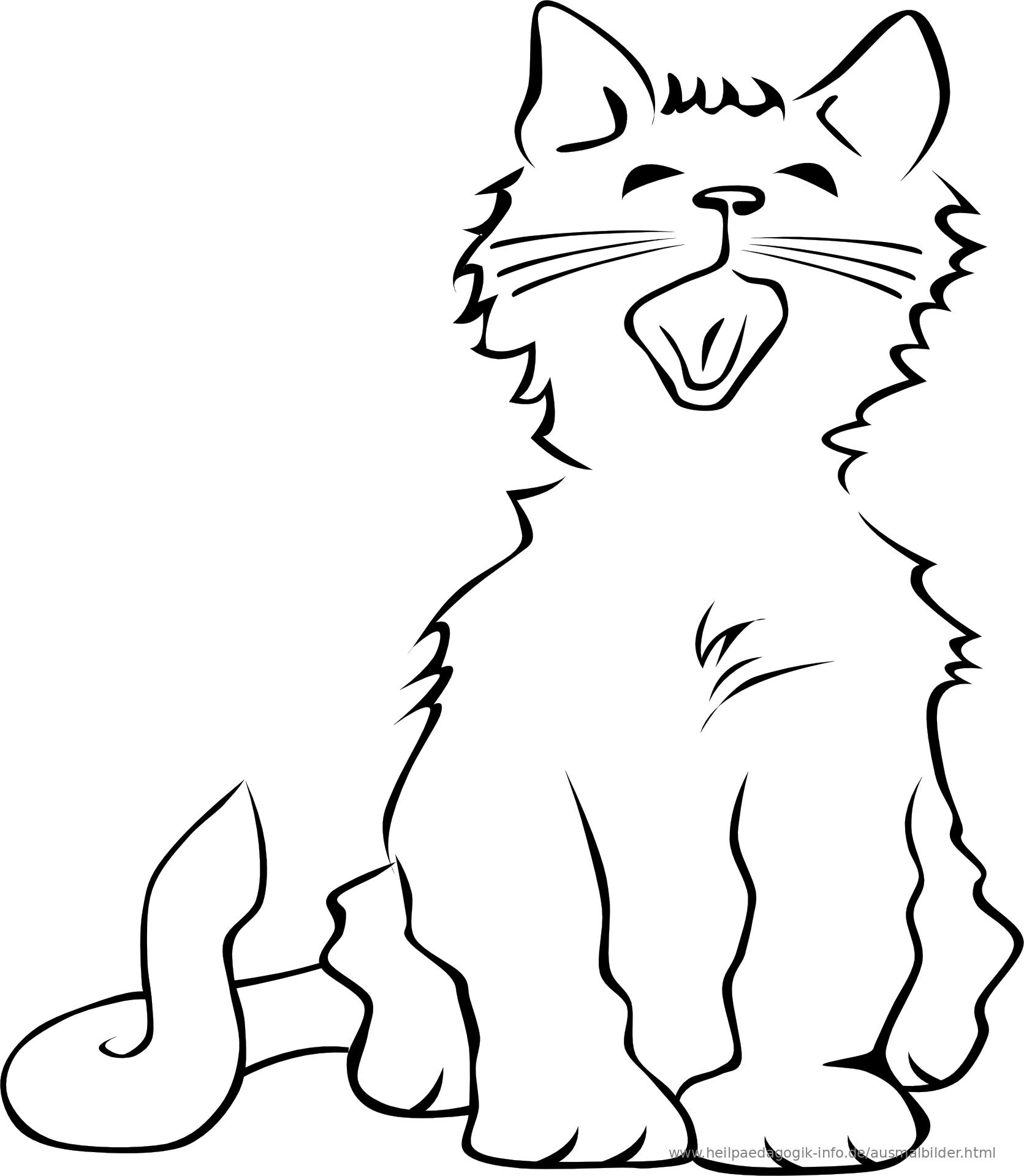 Ausmalbilder Kostenlos Katzen Ausmalbild Niedliches Kätzchen 2019