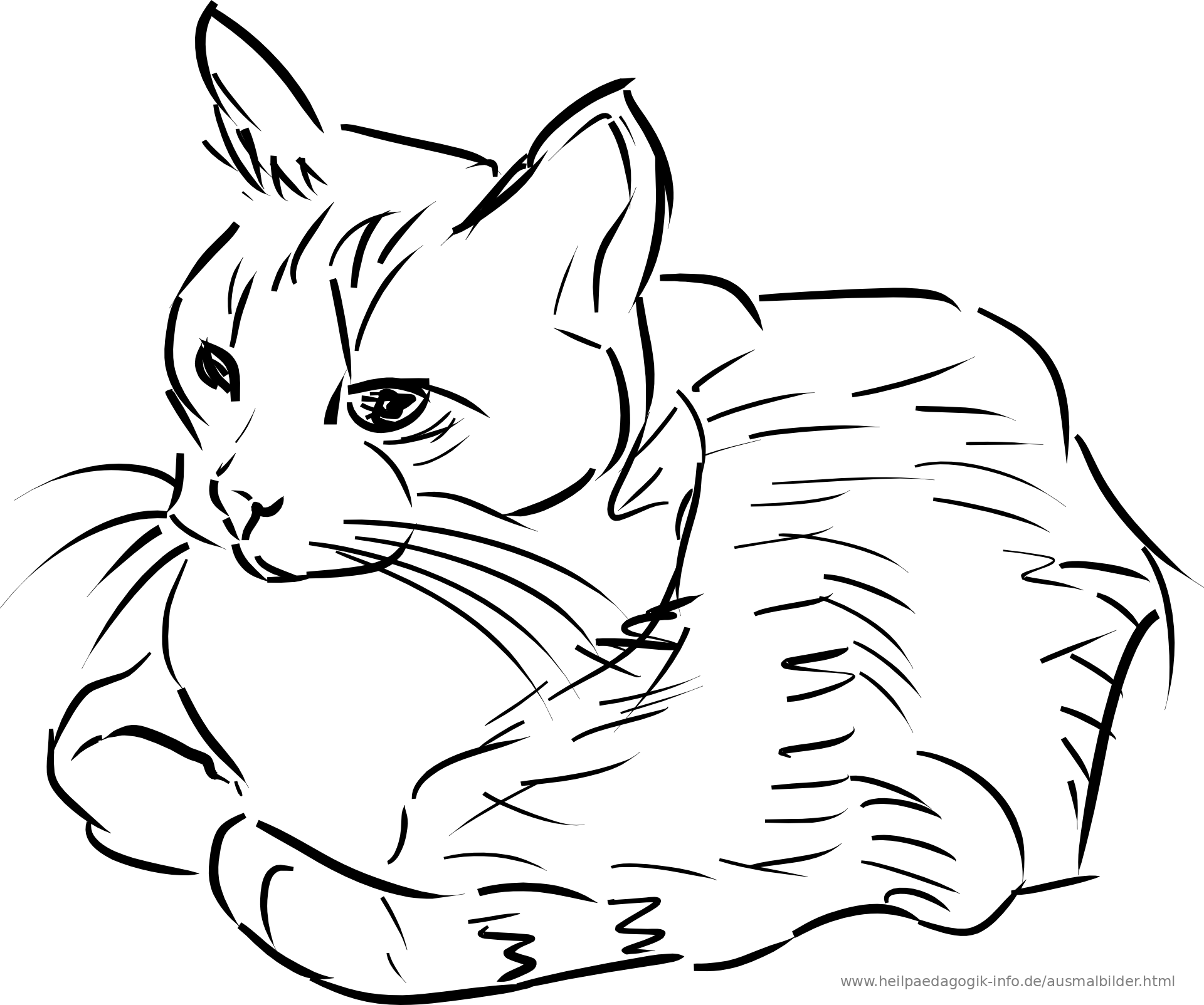 Line Art Information : Moved permanently