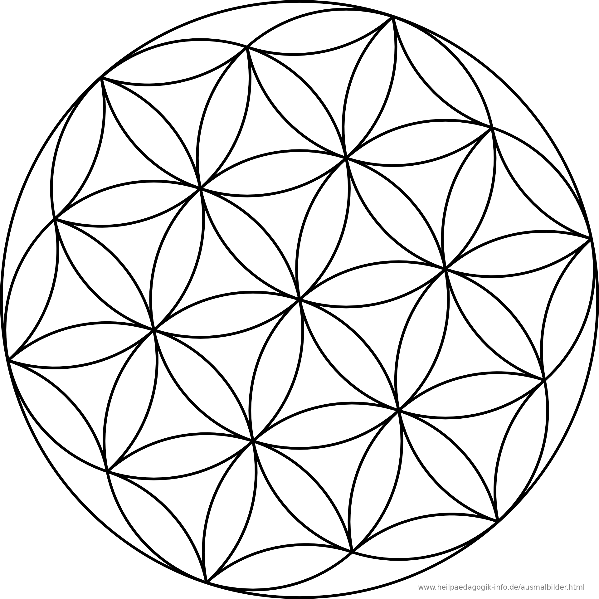 Flower Circle Line Drawing : Ausmalbilder mandalas