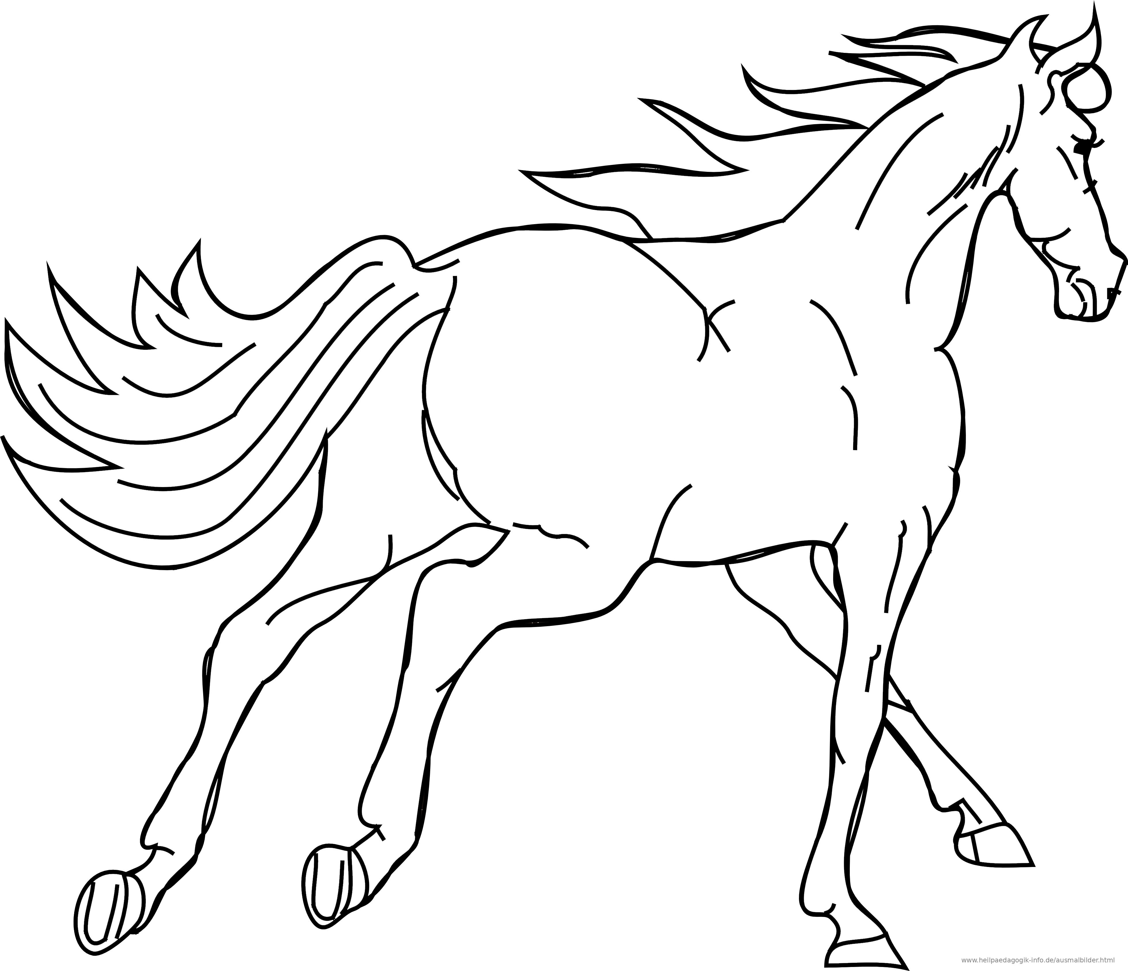 Ausmalbilder Pferde | heimhifi.com